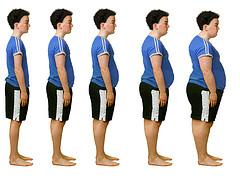 ensayo sobre la obesidad: